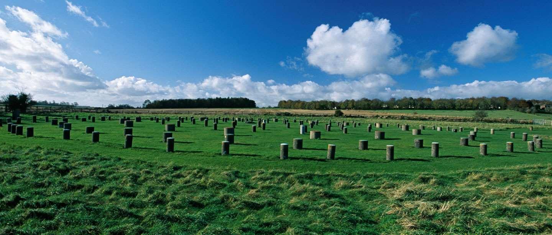 Image: Woodhenge