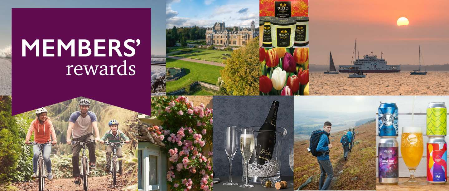 Image: Collage including family riding bikes, historic hotel, Beech's chocolates, tulips, Red Funnel ferry, roses on a wall, bottle of bubbly, hikers and a collection of beers