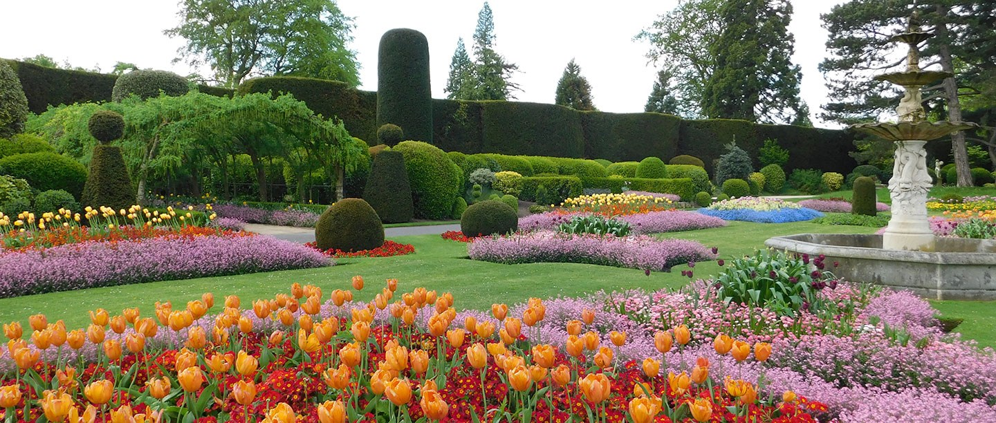 Brightly coloured flowers in an English Heritage garden in spring