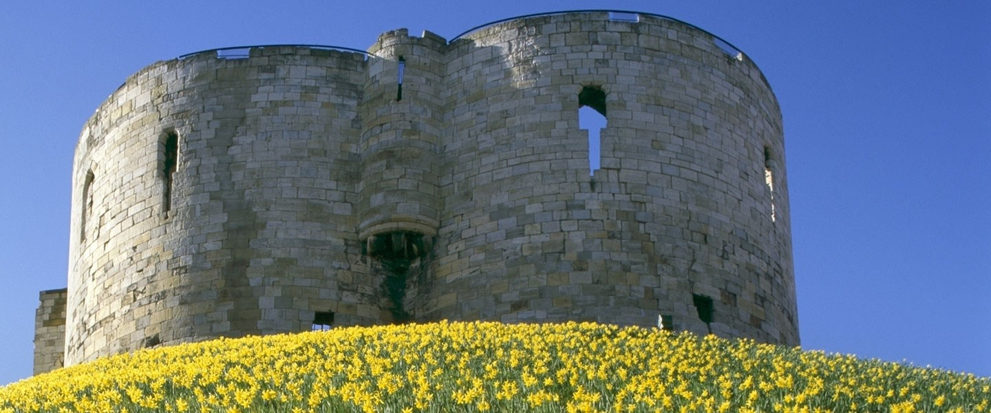 Photograph of Clifford's Tower from ground level, showing daffodils in foreground