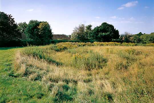 Flowerdown Barrows, seen from the south with housing in the background