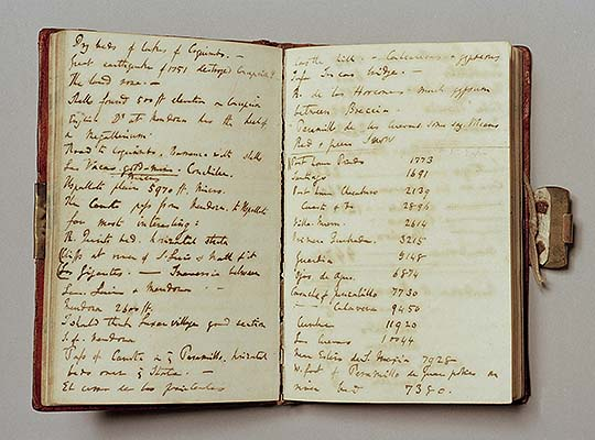 Two pages from one of Charles Darwin's Beagle voyage notebooks with brass clip visible