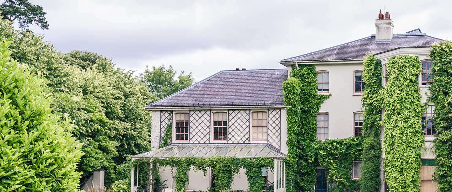 Down House appears large and creamy coloured, with heavy bright green plants growing up to a slate roof