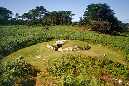 The substantial kerb and massive capstones of the Upper Burial Chamber, in a grassy clearing among the bracken