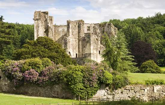 A landscape shot of Old Wardour Castle