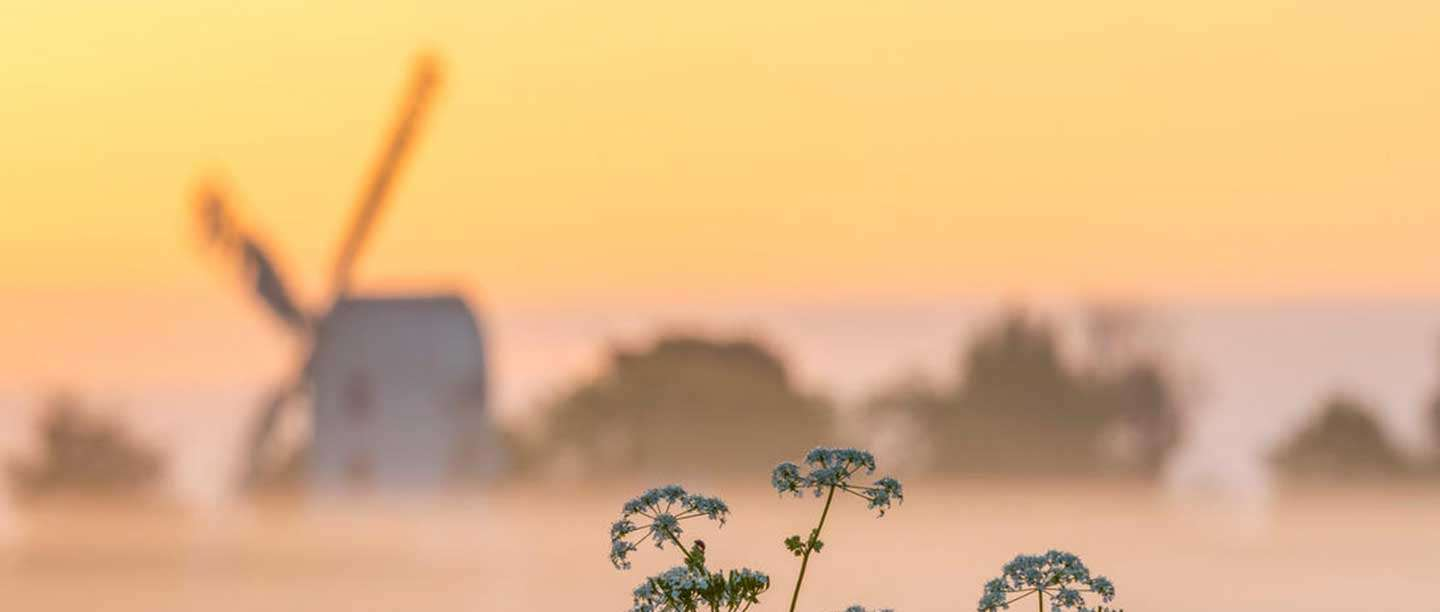 A view of the outline of the windmill sails in soft focus in the distance against a warm sunrise sky