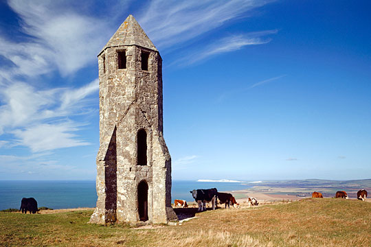 St Catherines Oratory with cattle grazing round and about wnd the sea below in the background