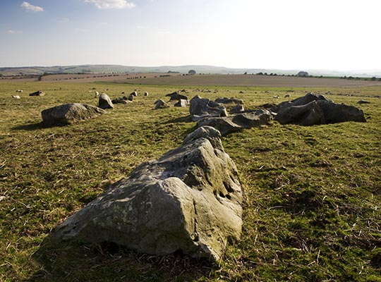 Sarsen stones lying on the Marlborough Downs