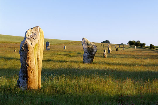 The large sarsen stones of the Avenue march northwards towards the B4003 road approcahing Avebury
