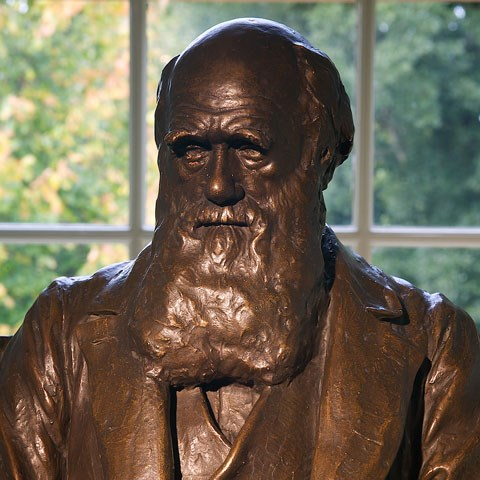 Bust of Charles Darwin at Down House